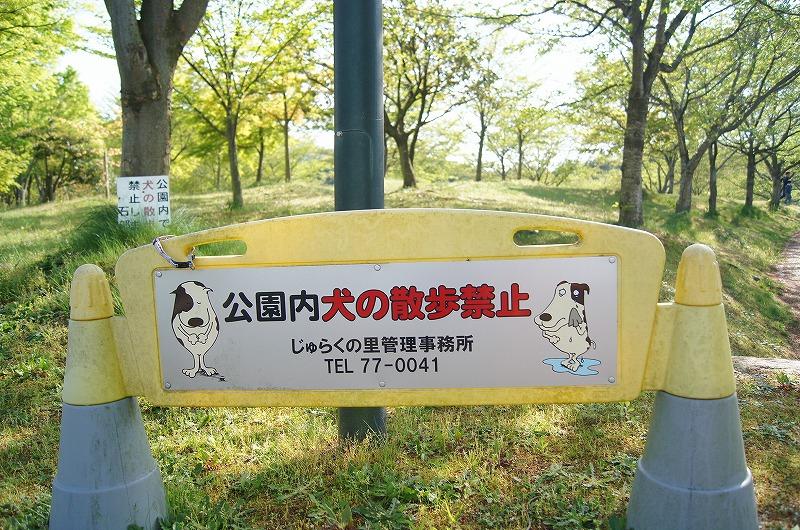 犬の散歩禁止ですよ-