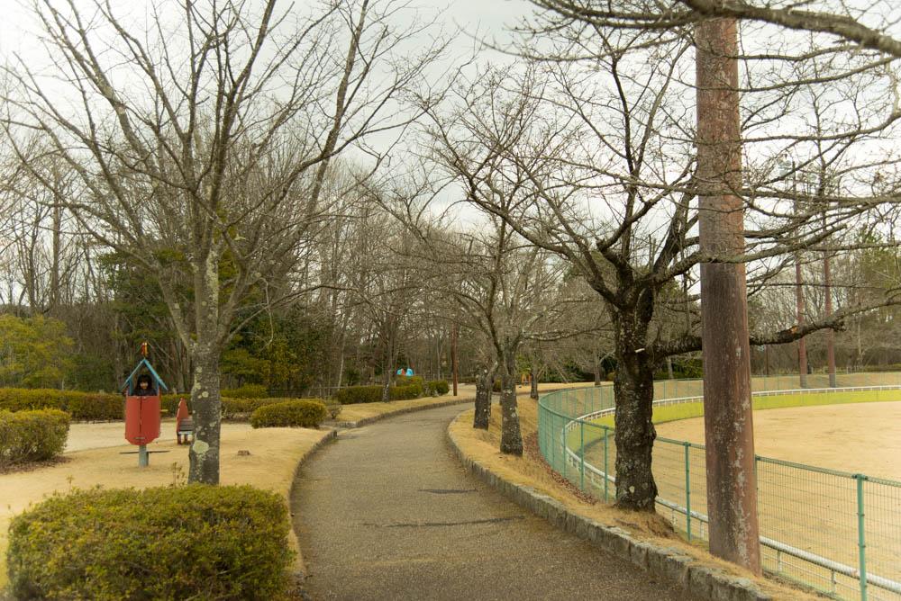 20160313_sigaraki (7)