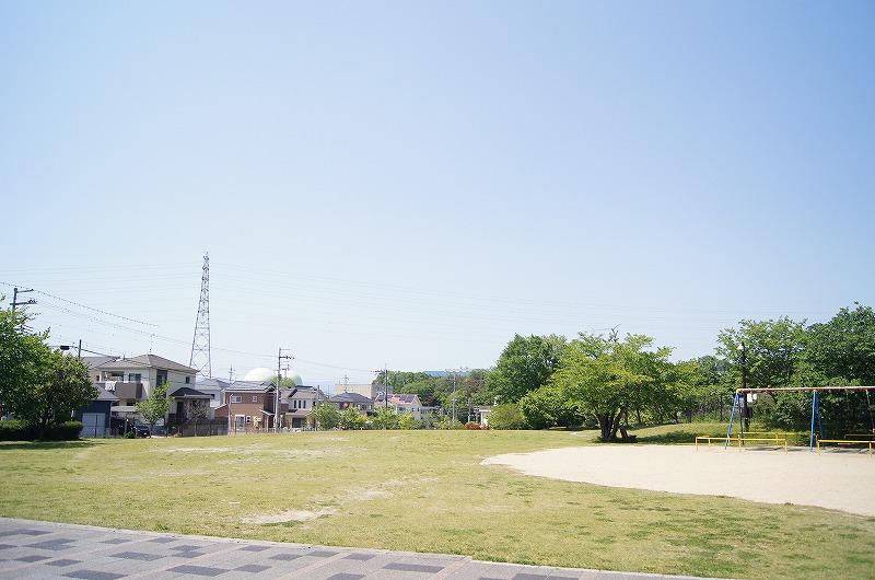 DSC08705
